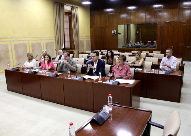 Los miembros de la comisión de investigación de la FAFFE, en su sesión constitutiva.