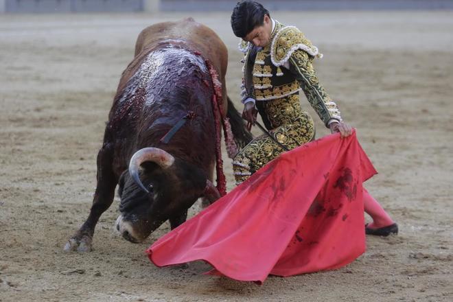 Pablo Aguado, durante su última actuación de novillero en Las Ventas