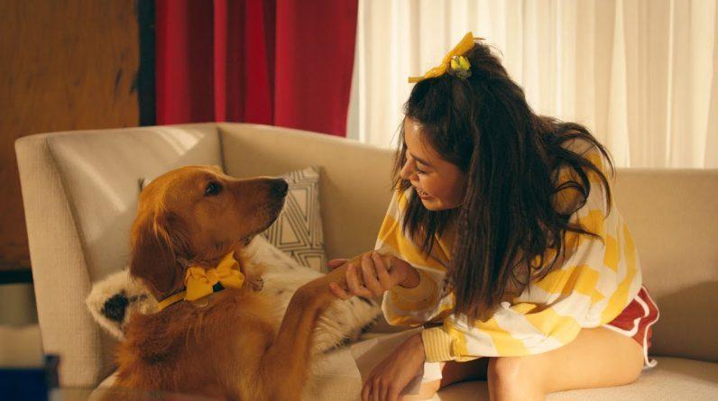 Un fotograma del videoclip de Happier, de Marshmello y Bastille