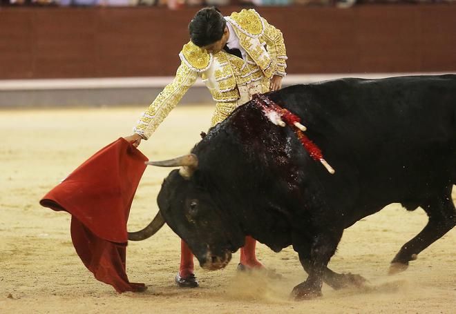 pablo aguado torero bilaketarekin bat datozen irudiak