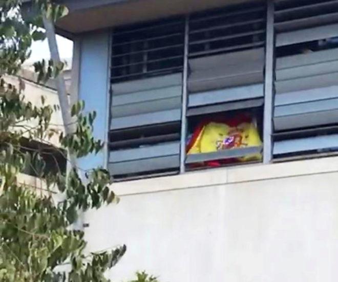 Un alumno exhibe la bandera española por la ventana.