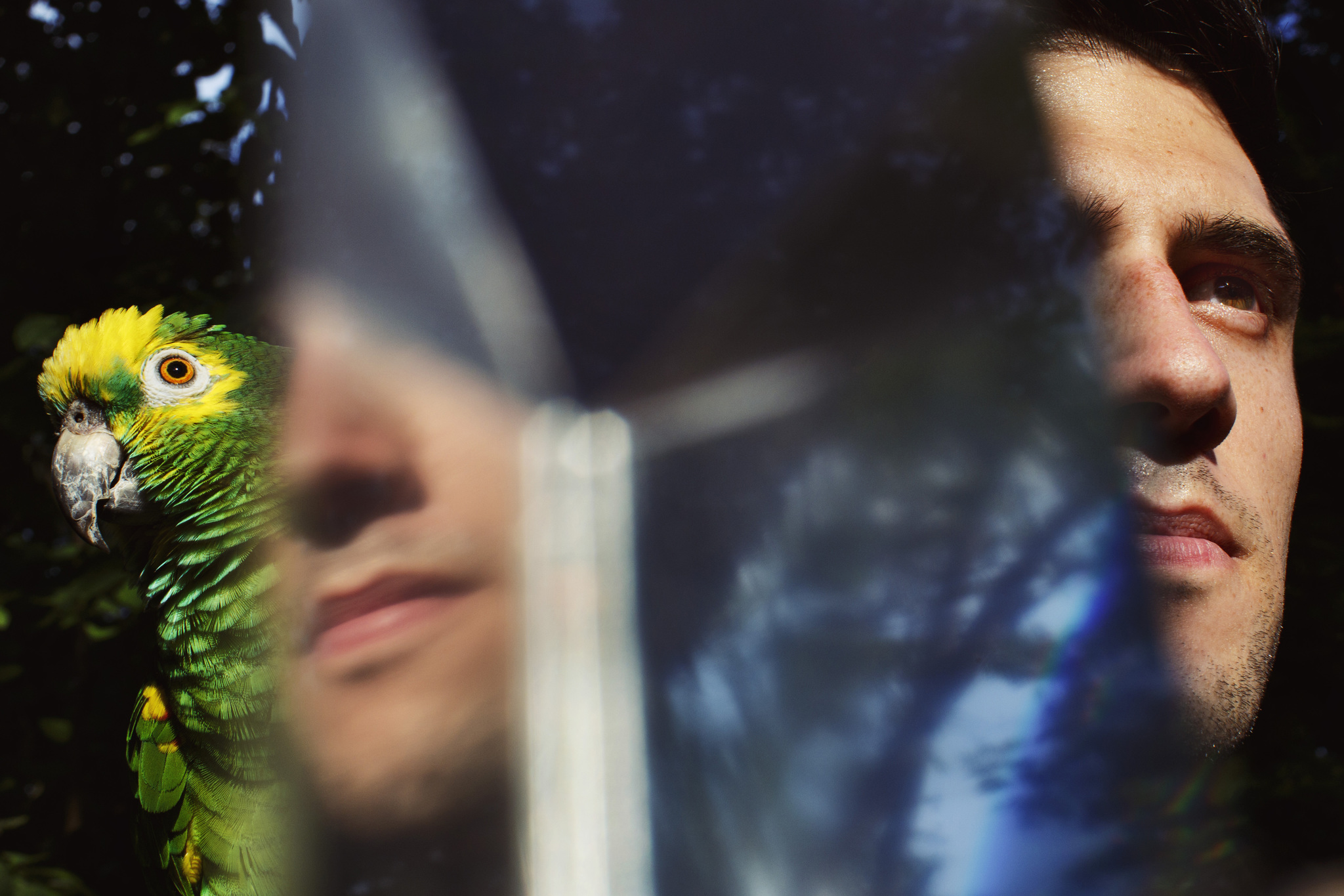 Un hombre y un loro miran al unísono y hacia el mismo lugar