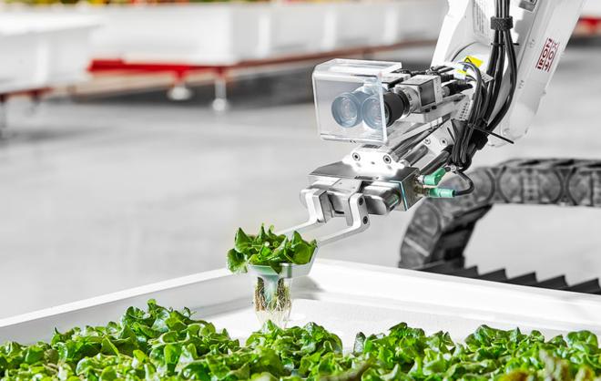 La granja que quiere acabar con los granjeros para que los robots hagan todo el trabajo