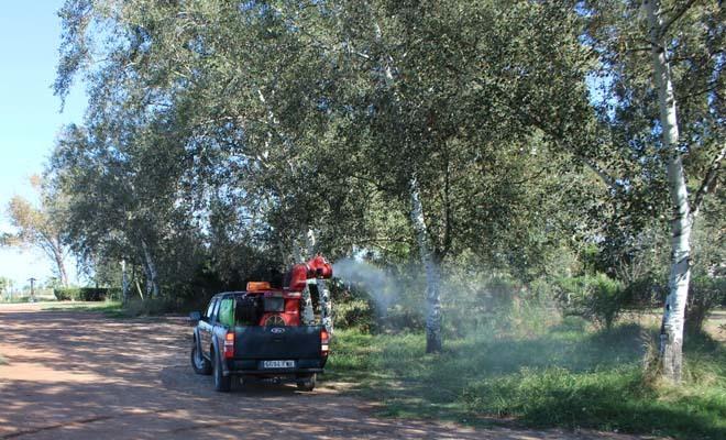 El Consorci del Millars mantendrá la 'lucha' contra los mosquitos y la plaga de los olmos