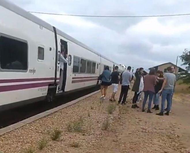 Imagen de uno de los trenes con dirección a estaciones de Extremadura parado en el campo.