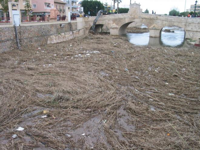 El río Segura, completamente cubierto por la suciedad, a su paso por el municipio de Rojales.