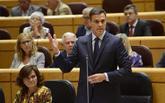 Pedro Sánchez, durante una sesión de control al Gobierno en el...