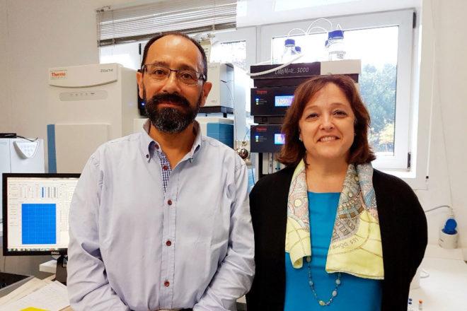 El catedrático Ezequiel Pérez y la doctora María José Torres