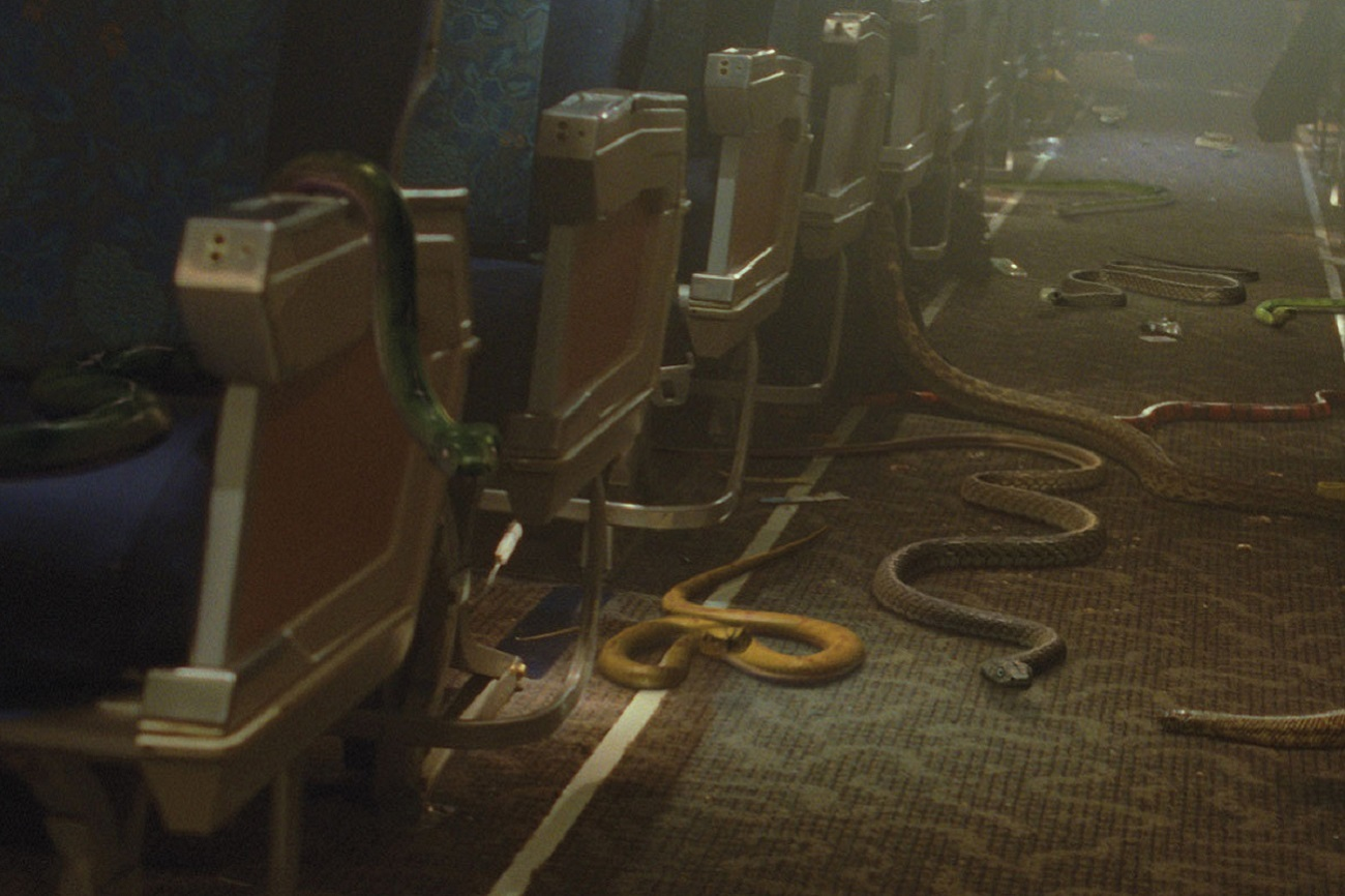 Fotograma de la película 'Serpientes en el avión'.