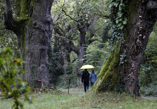 Dos personas pasean bajo la lluvia por el Jardín Botánico de Gijón