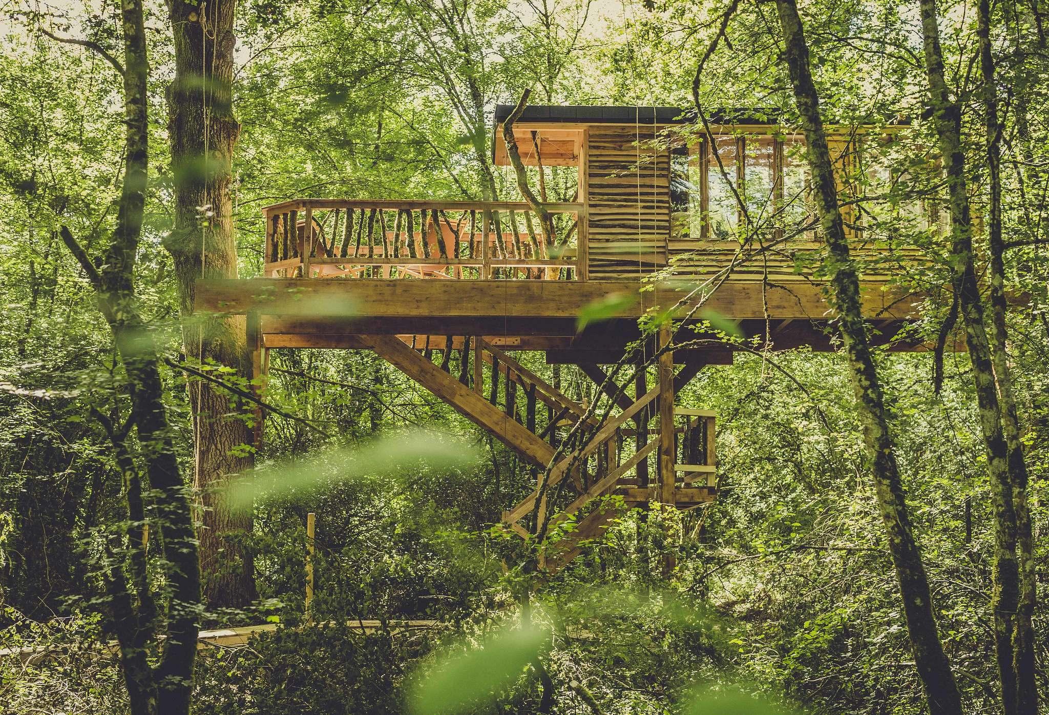 El Nuevo Lujo Suites Sin Agua Ni Luz En Medio De Un Bosque En Navarra Viajes