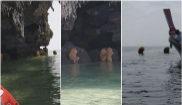 Los turistas no salían de su asombro al avistar estas criaturas...