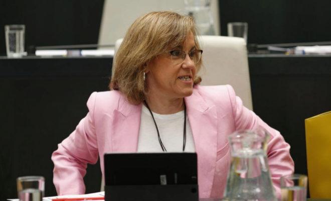 La portavoz municipal del PSOE, Purificación Causapié.