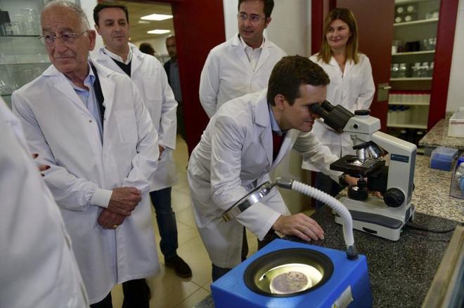El presidente del PP, Pablo Casado, durante una visita a un laboratorio de El Ejido (Almería).