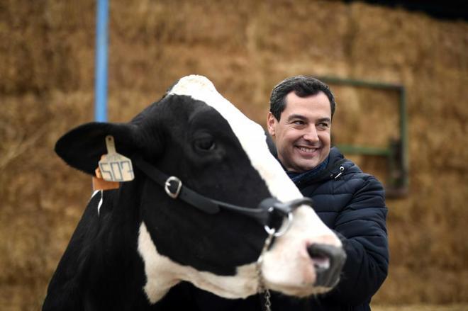 El candidato del PP a la Presidencia de la Junta de Andalucía, Juanma...