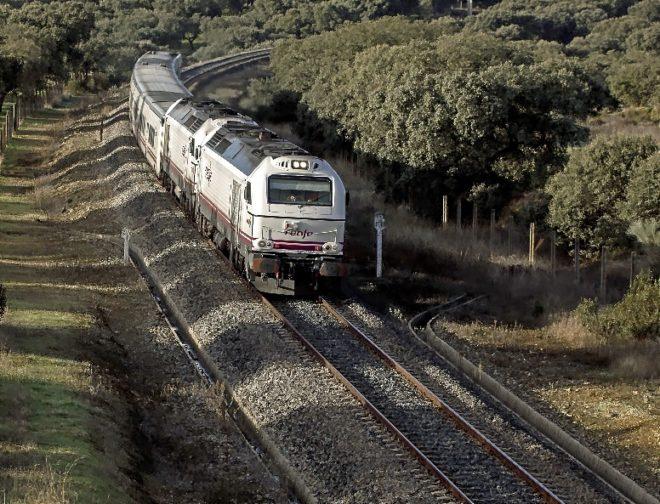 El viejo tren de gasoil circula entre una dehesa de encinas de...