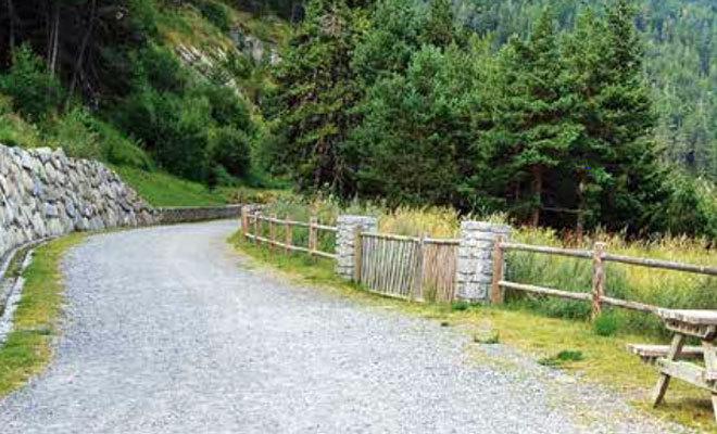 Vista del Camí de les Pardines.