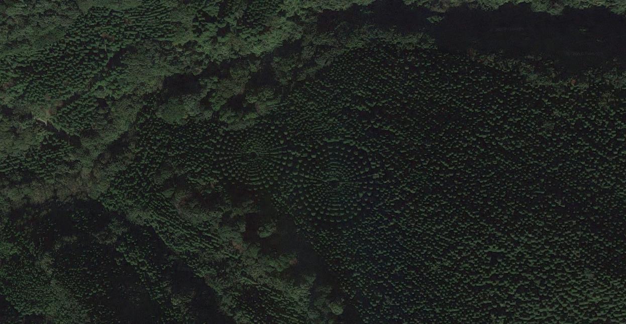 Fotografía por satélite del experimento