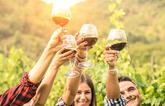 El vino es una bebida alcohólica obtenida a través de una...