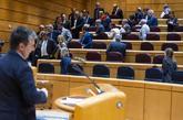 Senadores socialistas abandonan el pleno durante la intervención del...