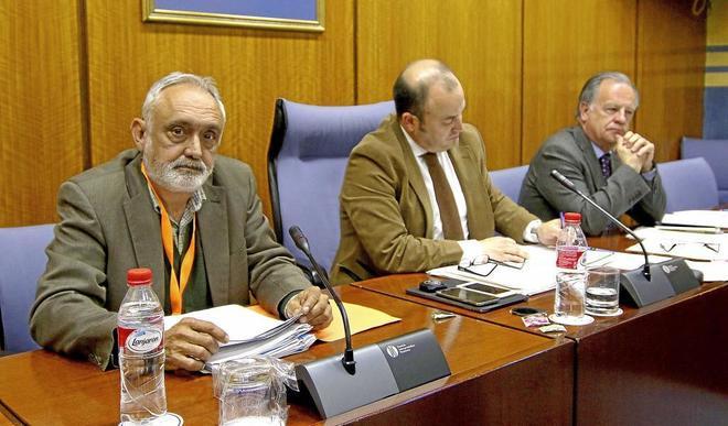 El ex director de la Faffe, Fernando Villén, en el Parlamento andaluz.
