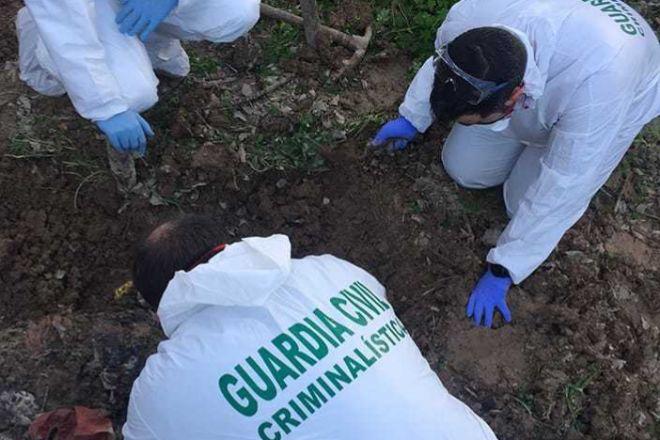 La Guardia Civil esclarece el homicidio de un irlandés desparecido en septiembre en Torrevieja | Alicante