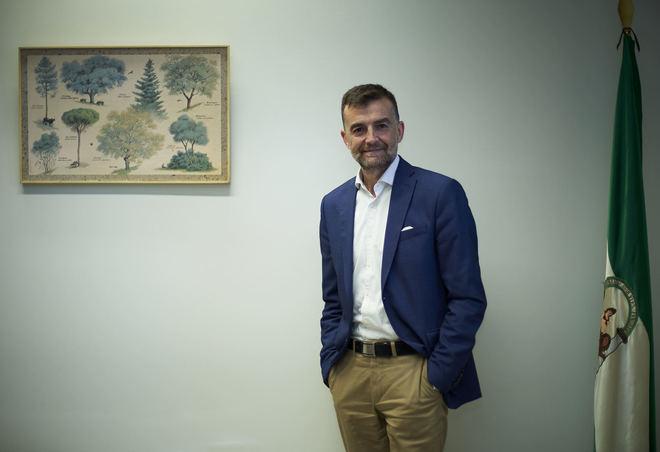 Antonio Maíllo, portavoz de de Adelante Andalucía en el Parlamento andaluz.