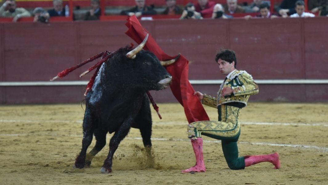 Pase rodilla en tierra de Juan del Álamo