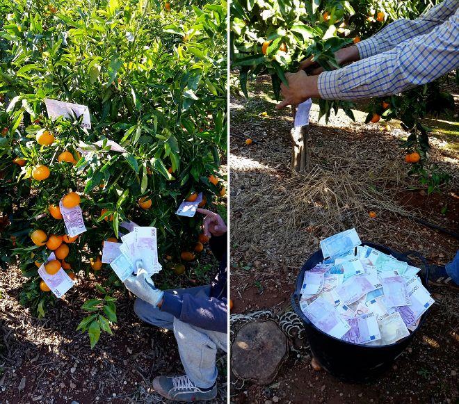 Los clanes rumanos y marroquíes compartían en redes sociales fotos como estas de sus billetes.