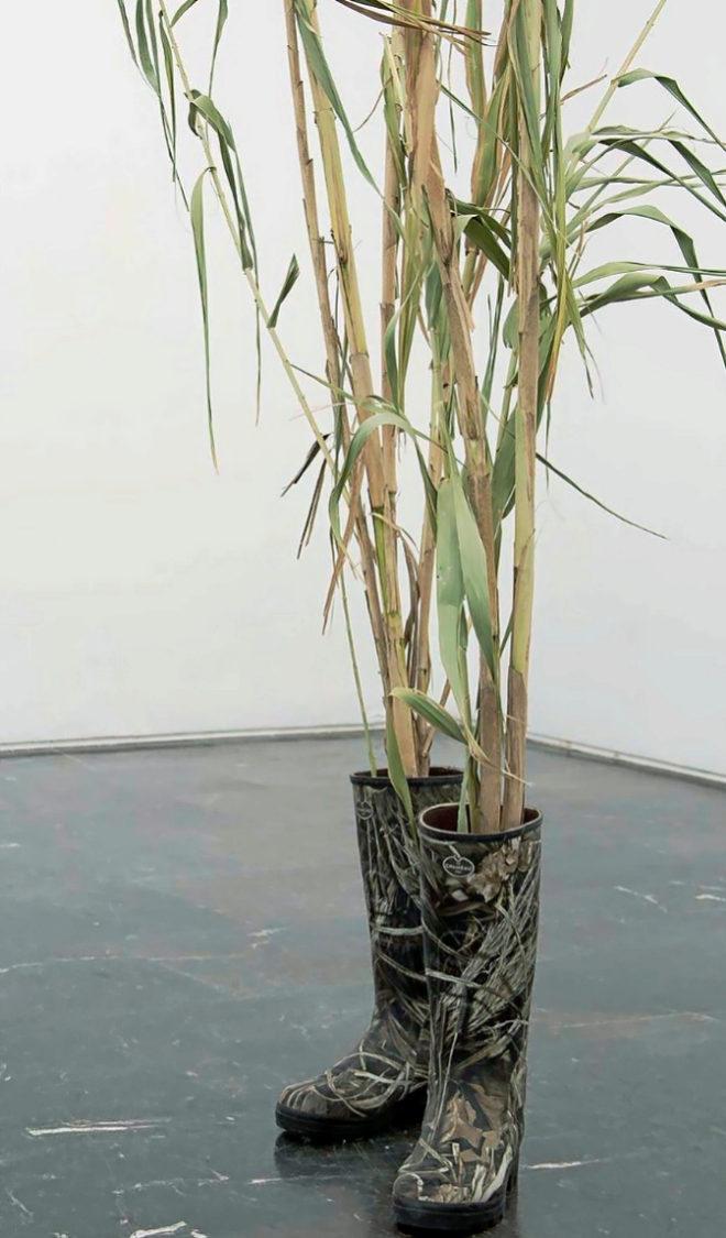 Una de las obras de Yann Sérandour expuestas en la galería Luis Adelantado.