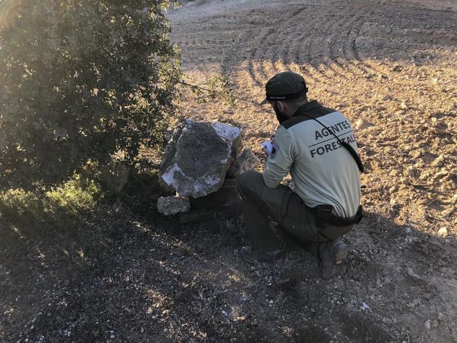 Un agente forestal comprueba un pozo en la Comunidad de Madrid.