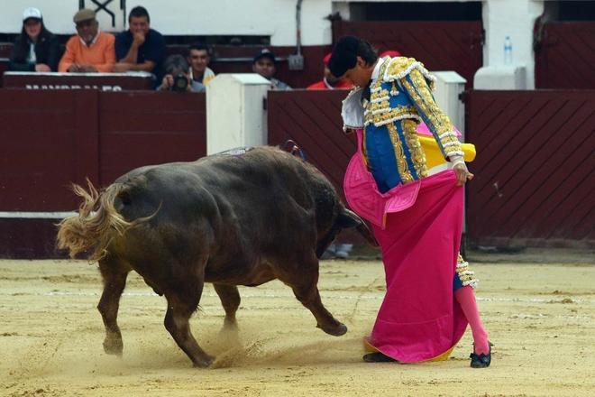 El toreo peruano Andrés Roca Rey, en una corrida en La Santamaría en Bogotá (Colombia).