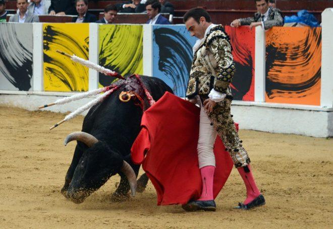 Enrique Ponce, con uno de los toros de La Santamaría.