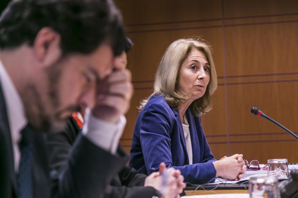 Carmen Adán durante su comparecencia en el Parlamento Vasco.