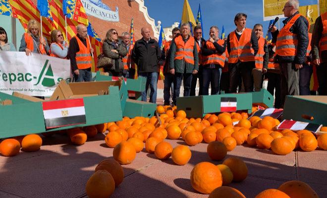 AVA-Asaja y Fepac se han concentrado este miércoles frente al puerto de Castellón para protestar por la entrada de naranjas de Egipto en plena crisis citrícola.