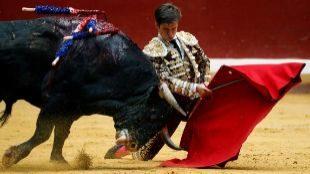 El Supremo ratifica la negativa a la consulta sobre los toros en San Sebastián