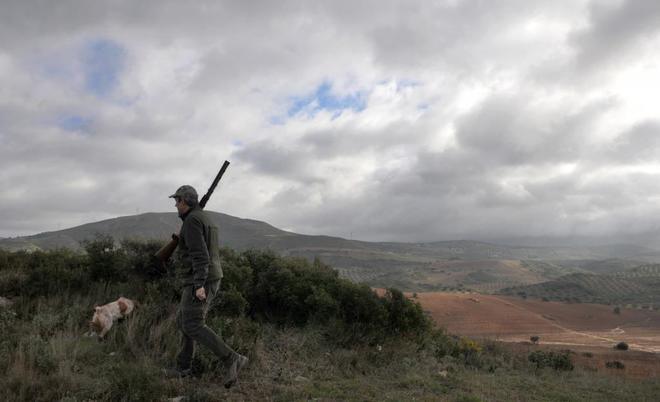 Un cazador camina con su perro durante una cacería en Andalucía.