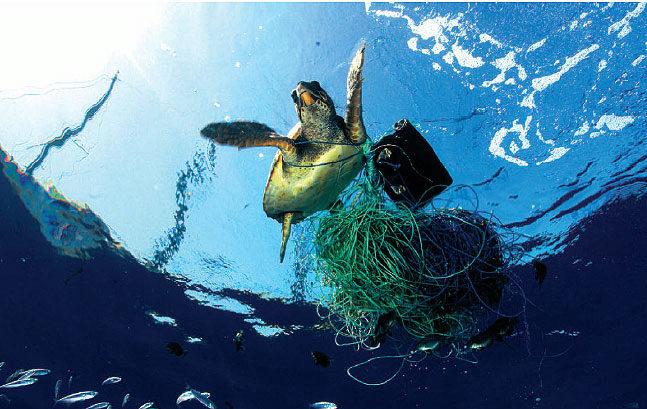 Concienciación: la amenaza del plástico