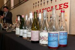 Recorrido por los vinos más radicales de España