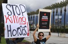 El misterio de la pista de Santa Anita tras la muerte de 21 caballos