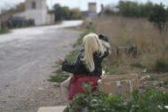 Laura ejerció la prostitución como travesti en el Caminàs durante cinco años. EUGENIO TORRES