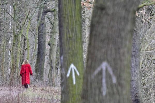 Una mujer pasea en un bosque de Berlín.
