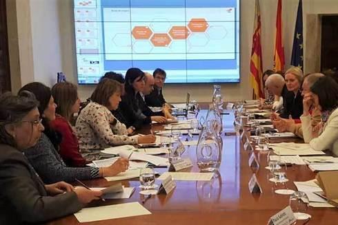 El comité promovido por la Conselleria de Sanidad y la AVI, durante la reunión.
