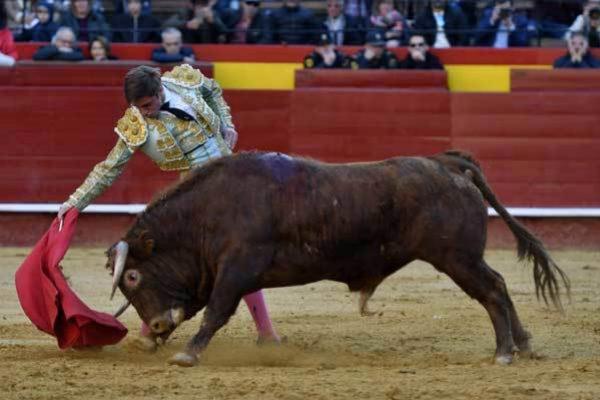 """Jordi San José, exprimiendo la bravura de """"Cachaco"""", un excelente eral de Daniel Ramos."""