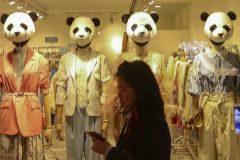 Pandas comunistas