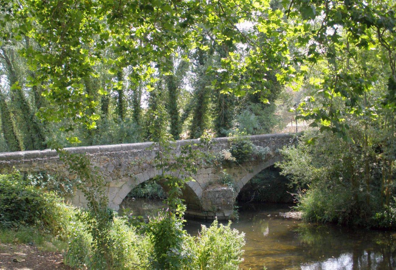 A lo largo del río Eresma, hasta llegar al Monasterio de Santa María...