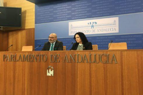 Los diputados de Vox Alejandro Hernández y Luz Belinda Rodríguez, en el Parlamento.