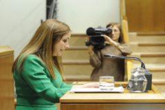 María Jesús San José interviene en el Parlamento.