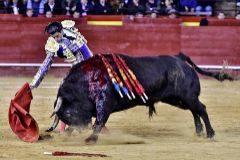 Derechazo de Simón al notable sexto toro de la corrida de Zalduendo.