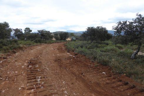 La pista forestal que está construyéndose en la Font Roja